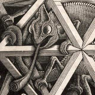 The chameleon's tongue, detail from Escher's Stars